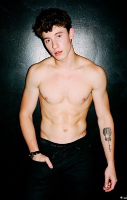 Shawn Mendes Poids